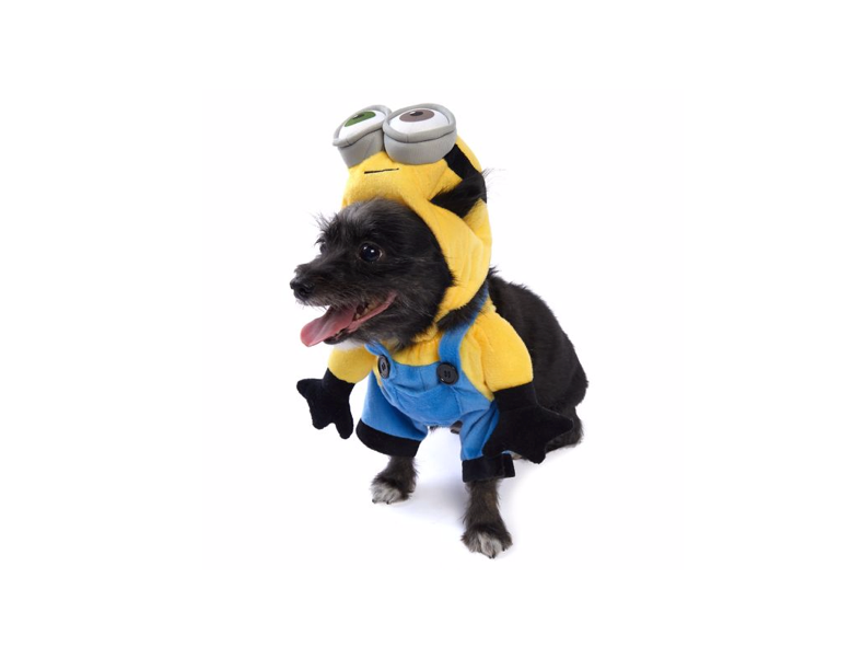 This Minion costume for dogs who love bananas