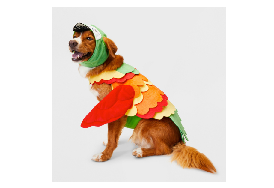 This costume for dogs that think they're birds