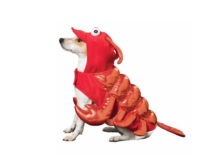 This snappy crustacean costume for dogs who love the sea