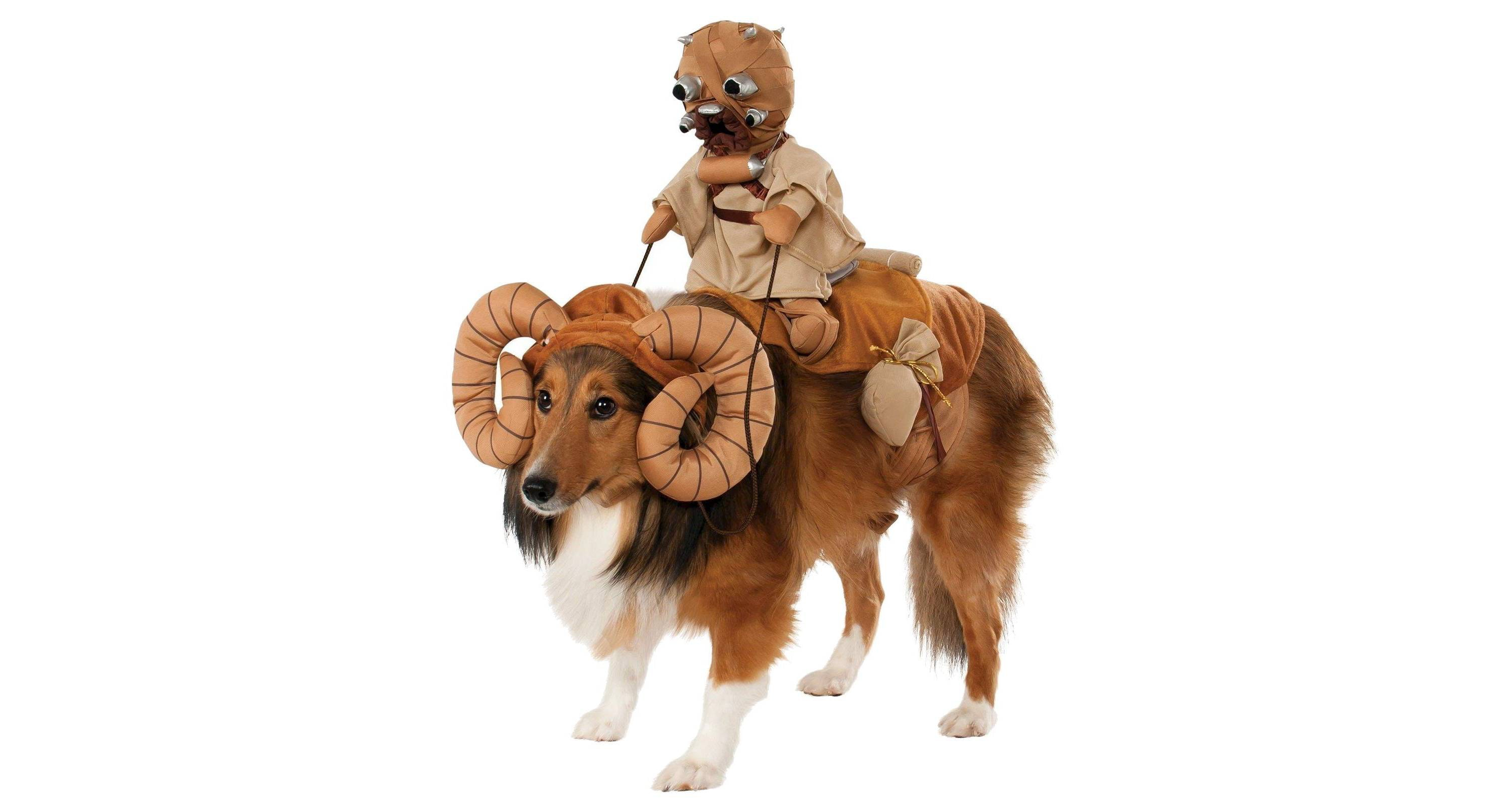 This costume that turns your dog into a mighty Bantha