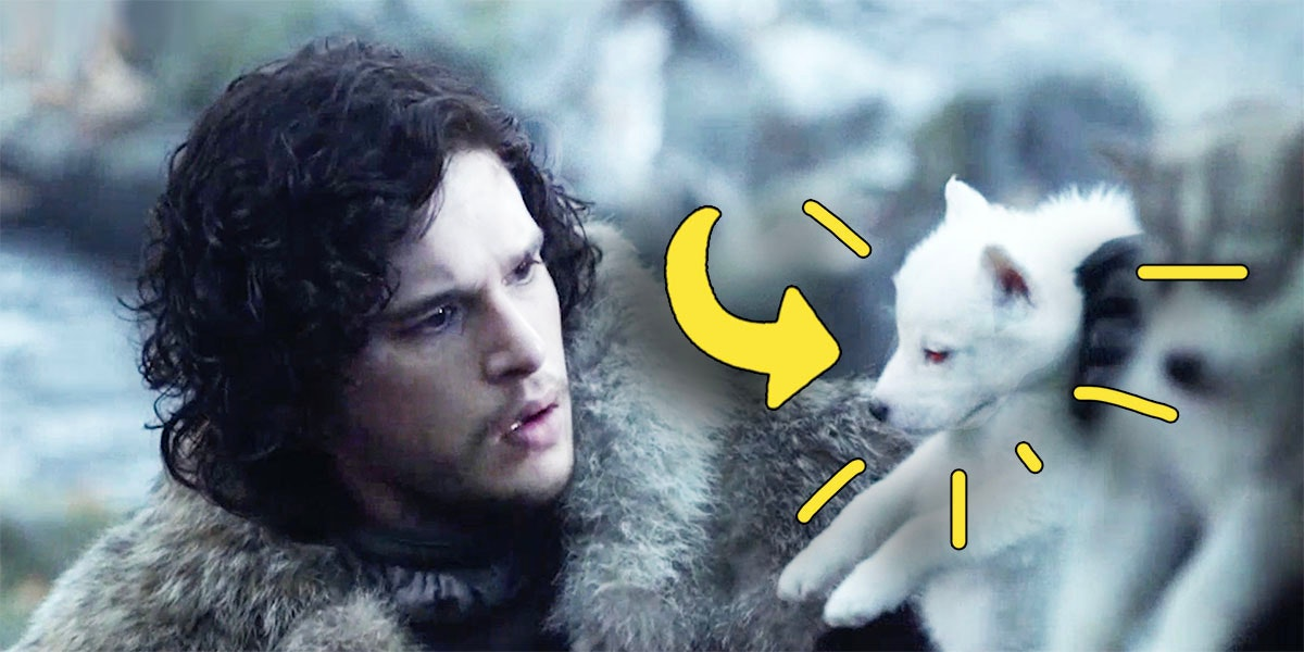 This Game of Thrones Direwolves Fan Theory is Blowing Our Minds 🐺