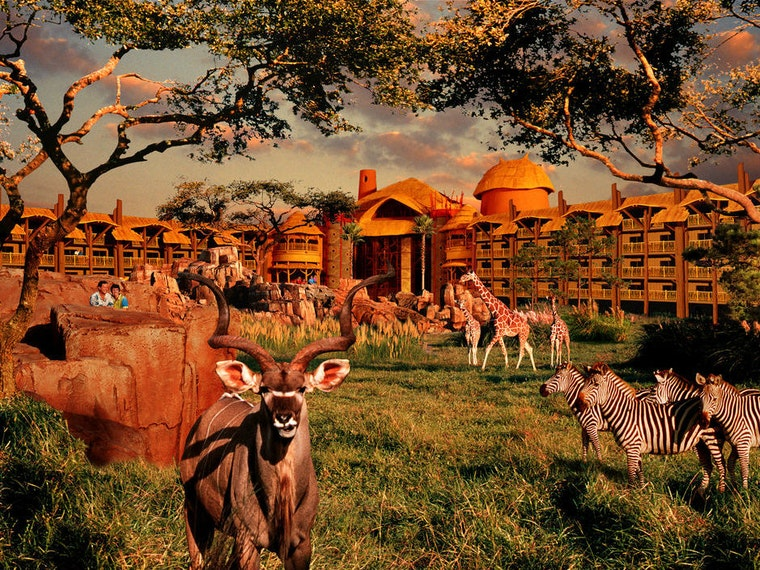 This African safari refuge hotel ... located in Florida