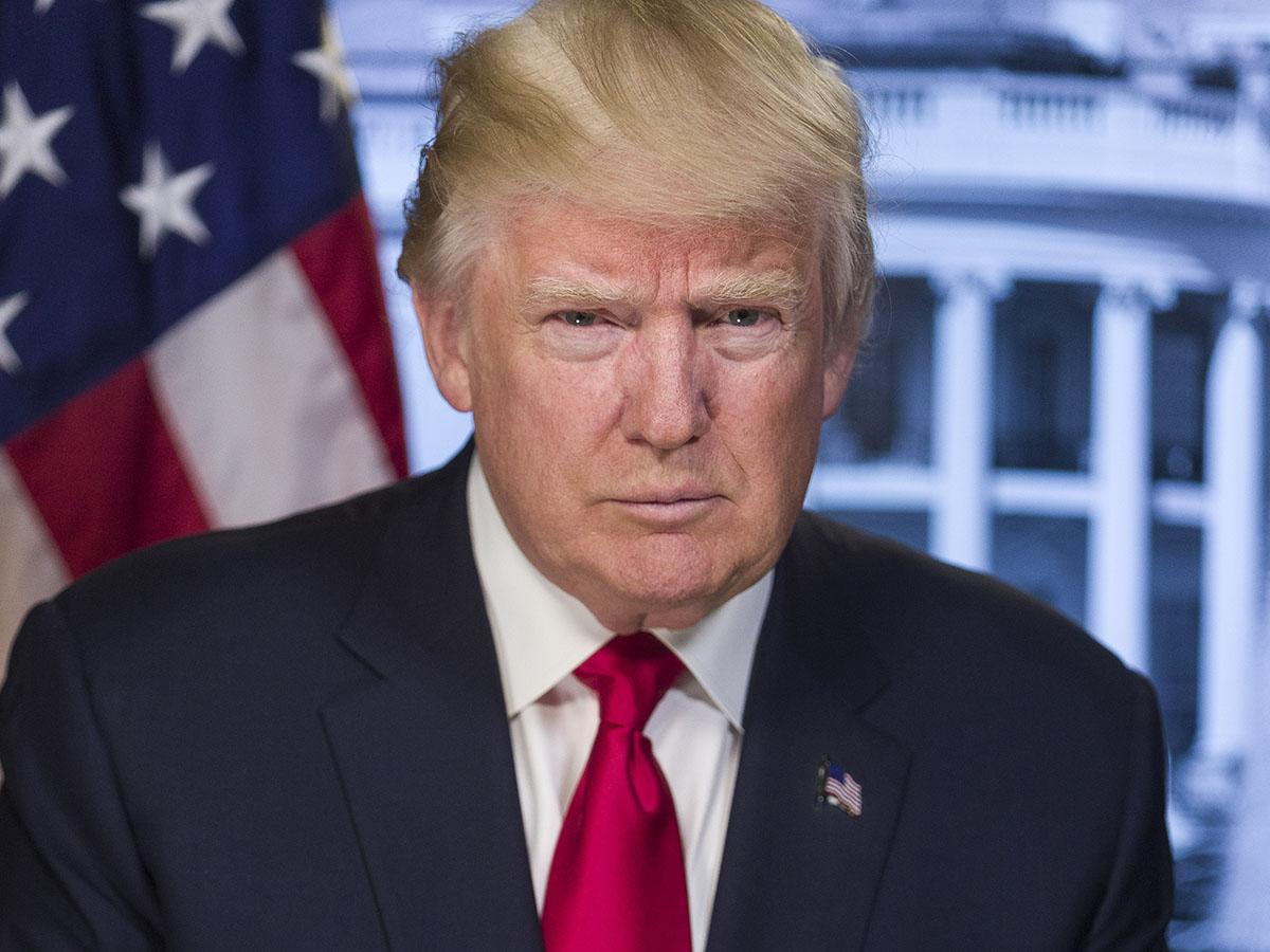 2020 Pro Donald Trump Campaign Button