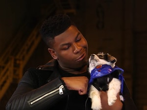 John Boyega Is No Match for These Adorable Puppies