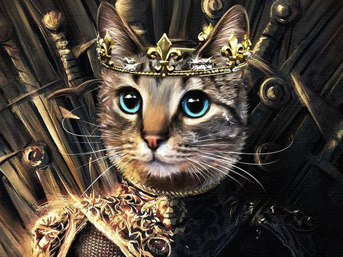 A picture of your cat, drawn as a GoT character