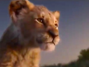Beyoncé, Donald Glover Sing 'Can You Feel the Love Tonight' in 'Lion King' Promo