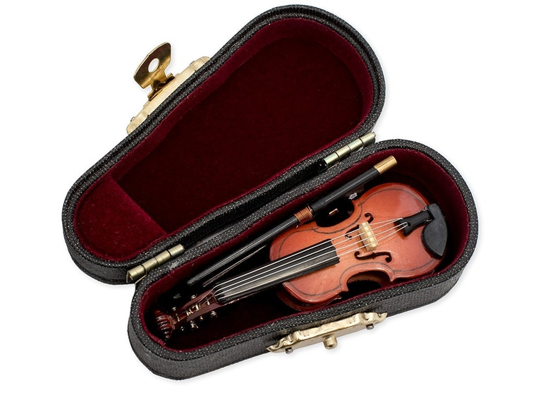 The world's tiniest violin 🎻
