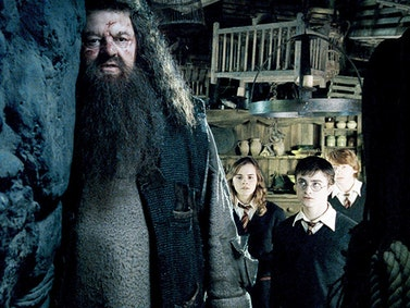 Harry Potter Theory: Hagrid Is a Secret Death Eater! 😲